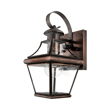 Quoizel CAR8406AC Aged Copper Wall Lantern, Incandescent