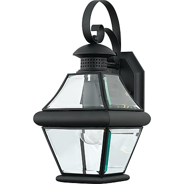 Quoizel RJ8407KFL Mystic Black Wall Lantern, CFL