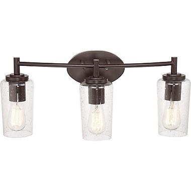 Quoizel EDS8603WT CFL Vanity Light Lamp, Western Bronze