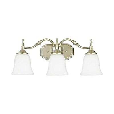 Quoizel TT8743BN CFL Vanity Light Lamp, Brushed Nickel