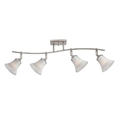 Quoizel DH1404AN Incandescent Ceiling Track Light, Antique Nickel