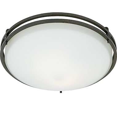 Quoizel OZ1613IN Incandescent Flush Mount, Iron Gate