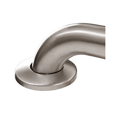 ARISTA Stainless Steel Concealed Screw Grab Bar; 32'' W
