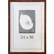 Frame USA Corporate Simple Frame for Matted Pictures; 24'' x 36''
