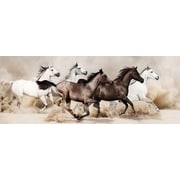Empire Art Direct ''Wild Horses Stampede'' Frameless Free Floating Tempered Glass Panel Graphic Art