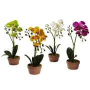 Nearly Natural Phalaenopsis Orchid w/ Clay Vase (Set of 4)