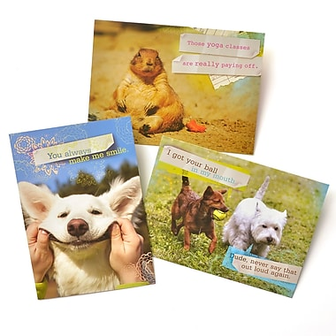 Gartner Greetings Pet Humor Greeting Cards, 3 pack, Thinking Of You, Call Me