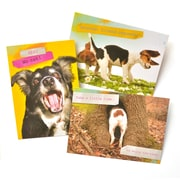 Gartner Greetings Pet Humor Greeting Cards, 3 pack, Thinking Of You, What's Up