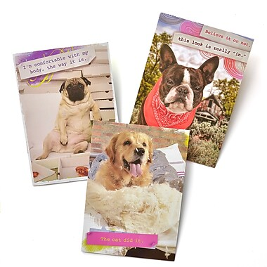 Gartner Greetings Pet Humor Greeting Cards, 3 pack, Just For Fun, Trouble