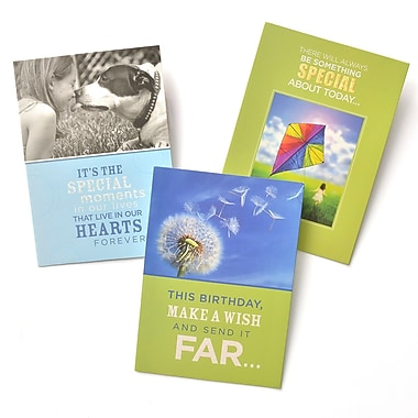 Gartner Greetings Boutique Greeting Cards, 3 pack - Birthday, You're Special