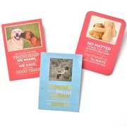 Gartner Greetings Boutique Greeting Cards, 3 pack - Birthday, No Better Friend
