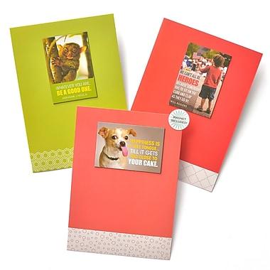 Gartner Greetings Boutique Greeting Cards, 3 pack - Birthday