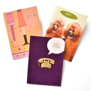 Gartner Greetings Premium Greeting Cards, 3 pack - Friendship