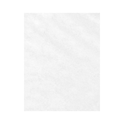 Lux Paper 8.5 x 11 inch 80 lbs. Clear Translucent 500/Pack
