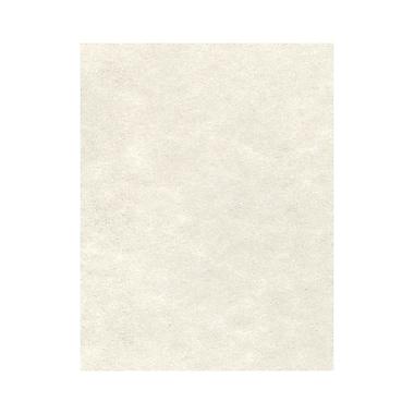 LUX 8 1/2 x 11 Cardstock, Cream Parchment, 250/Box (81211-C-29-250)