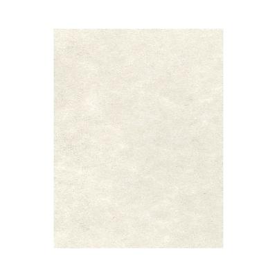 LUX 8 1/2 x 11 Cardstock 250/Box, Cream Parchment (81211-C-29-250)