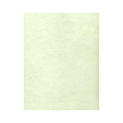 Lux Cardstock 8.5 x 11 inch, Green Parchment 250/Pack