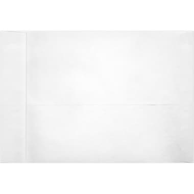 LUX 13 x 19 Jumbo Envelopes 250/Box, 18lb. Tyvek (41319-250)