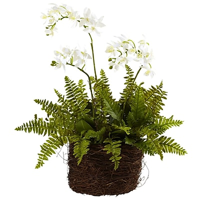 Nearly Natural 4834 Phalaenopsis & Fern with Birdsnest Planter Multi Color