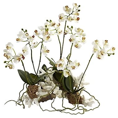 Nearly Natural 4836 Phalaenopsis Orchid Floral Arrangement Set 14 x 13 inch