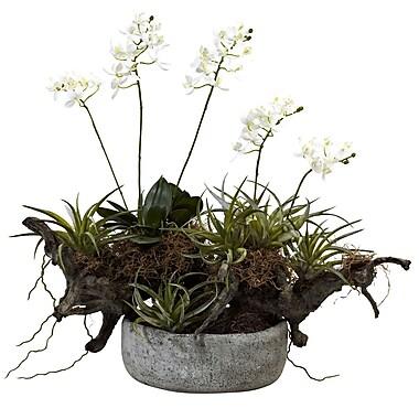 Nearly Natural 4839 Succulent Garden Floral Arrangement 20 x 22-inch White