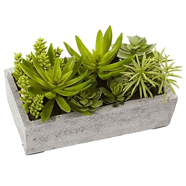 Nearly Natural Succulent Garden with Concrete Planter 6.5 x 12.8 inch (4841)