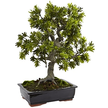 Nearly Natural 4849 Giant Podocarpus with Mossed Bonsai Planter Multi Color