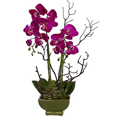 Nearly Natural 4990 Orchid & Succulent Arrangement Multi Color