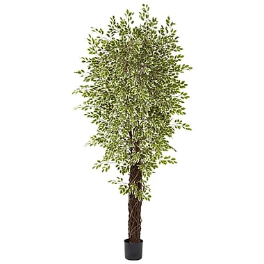 Nearly Natural Variegated Mini Ficus Green (5431)