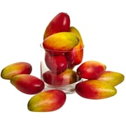 Nearly Natural 2190-S12 Weighted Faux Mango 5.5-inch Multi Color