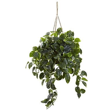 Nearly Natural Pothos Hanging Basket 36 x 30 inch (6844)