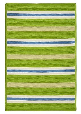 Colonial Mills Painter Stripe Garden Bright Indoor/Outdoor Area Rug; 3' x 5'