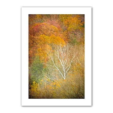 ArtWall In Autumn' by Antonio Raggio Photographic Print on Rolled Canvas; 52'' H x 36'' W