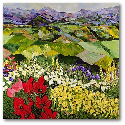 Courtside Market High Mountain Patch Painting Print on Wrapped Canvas