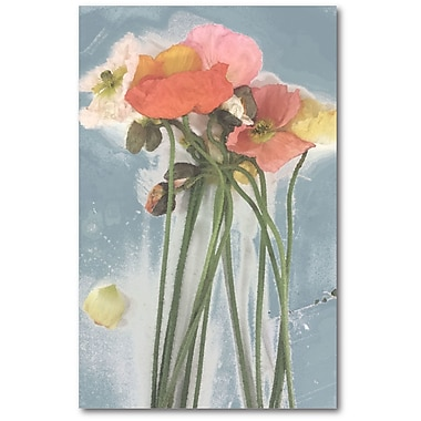 Courtside Market Poppy Spray I Painting Print on Wrapped Canvas