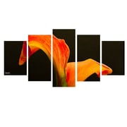 Ready2hangart 'Bloom' by Bruce Bain 5 Piece Photographic Print on Wrapped Canvas Set