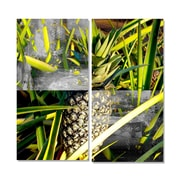 Ready2hangart Tropical Pineapple 2 Piece Photographic Print on Canvas Set