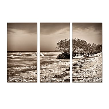 Ready2hangart 'Honeymoon Island' by Bruce Bain 3 Piece Photographic Print on Wrapped Canvas Set