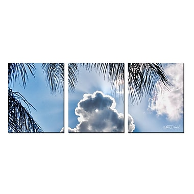Ready2hangart Cloudy Palms by Christopher Doherty 3 Piece Photographic Print on Wrapped Canvas Set