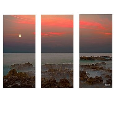Ready2hangart 'Coral Cove' by Bruce Bain 3 Piece Photographic Print on Wrapped Canvas Set