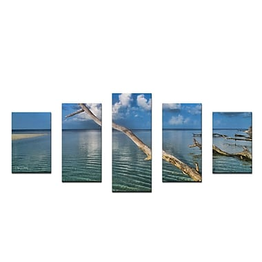 Ready2hangart 'Grand Bahama' by Christopher Doherty 5 Piece Photographic Print on Wrapped Canvas Set