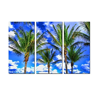 Ready2hangart 'Shady Palms' by Christopher Doherty 3 Piece Photographic Print on Wrapped Canvas Set