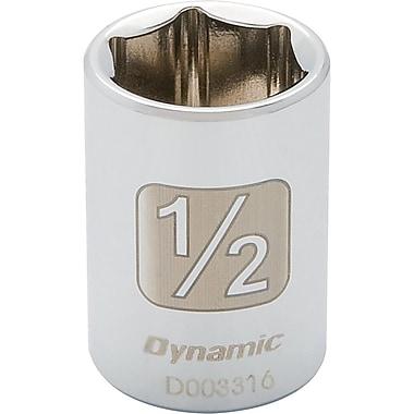 Dynamic Tools – Douilles SAE à 6 pans de 1/4 po, 1/4 po, longueur standard, fini chromé