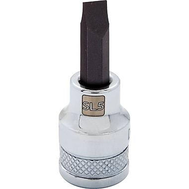Dynamic Tools – Douille à fini chromé à longueur standard avec mèche SI5, pointe à écrou avec prise de 3/8 po