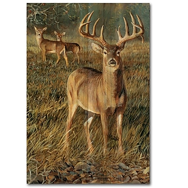 WGI GALLERY First Light Buck by Persis Clayton Weirs Painting Print Plaque; 12'' H x 8'' W x 1'' D