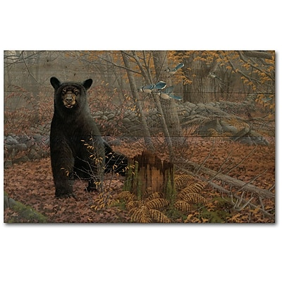 WGI GALLERY Stonewall Bear by Michael Sieve Painting Print Plaque in Black; 8'' H x 12'' W x 1'' D