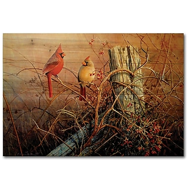 WGI GALLERY Frankly Scarlet by Scott Zoellick Painting Print Plaque; 16'' H x 24'' W x 1'' D