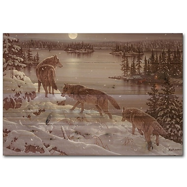 WGI GALLERY Moon Shadow by Jerry Gadamous Graphic Art Plaque; 16'' H x 24'' W x 1'' D