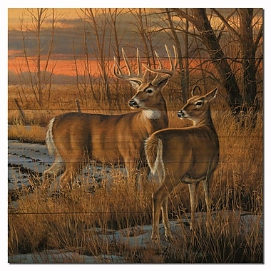 WGI GALLERY Day Break by Rosemary Millette Painting Print Plaque; 24'' H x 24'' W x 1'' D