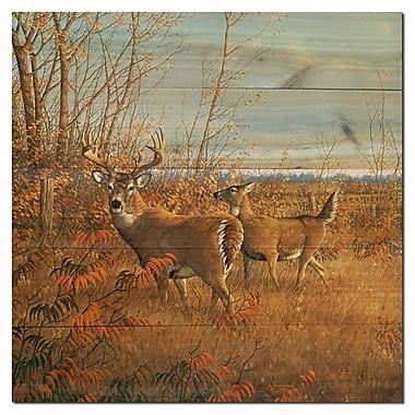 WGI GALLERY Sumac Buck by Michael Sieve Painting Print Plaque; 24'' H x 24'' W x 1'' D